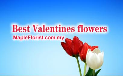 What is the best flower for Valentine's Day in Malaysia?