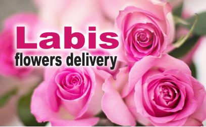 Flowers delivery Labis