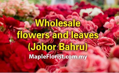 Johor Bahru fresh flowers and leaves Wholesale