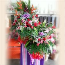Best flowers for congratulations 9