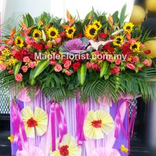 Congratulatory flower stands 11
