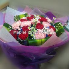 20 carnations bouquet